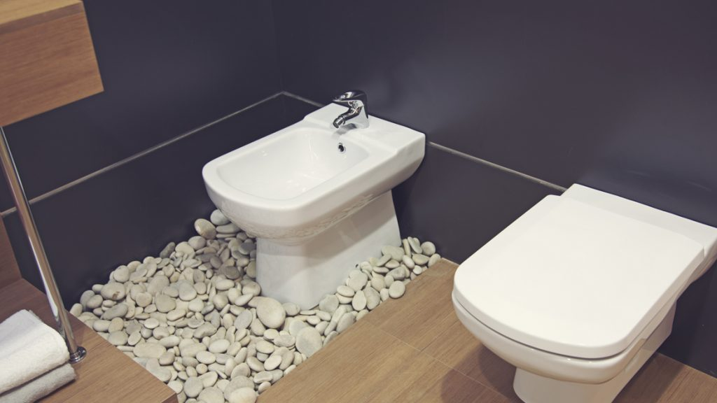 The toilet and bidet